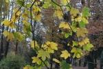 Банско през есента_1
