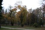Банско през есента_9