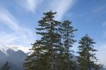 Пирин планина_25